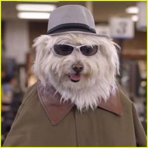 doritos-dogs-super-bowl-commercial